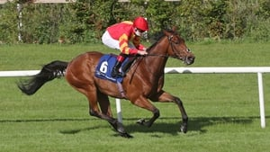 It was Patrick Sarsfield's second win at Leopardstown in the space of three weeks