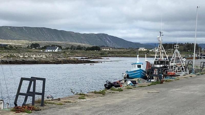 Achainí ar líne tosnaite chun pobal na Gaeltachta a chlarú mar mhionlach eitneach
