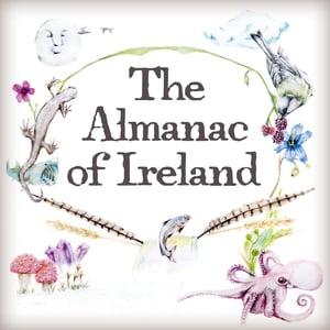 The Almanac of Ireland