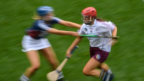 "The National Development Plan will incorporate 12 key goals, among them ""revitalising the camogie brand and identity"" and ""the provision of appropriate playing facilities for all camogie players""."