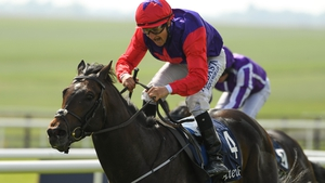Ken Condon's stable star must overcome a 314-day absence if he is to take the Minstrel Stakes for a second consecutive year