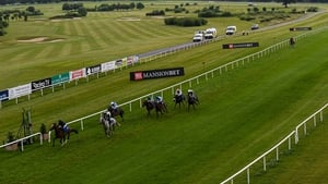 Laburnum, pictured shedding her maiden tag at the first attempt at Gowran Park in June