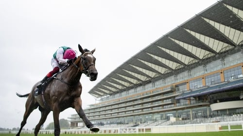 Enable will return at Kempton in the September Stakes