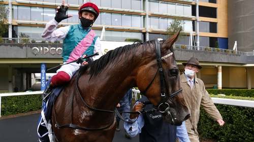 Enable racked up a hat-tick of wins in the King George at Ascot last month