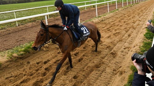 Galvin is put through his paces at Gordon Elliott's yard