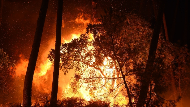 Forest fire France