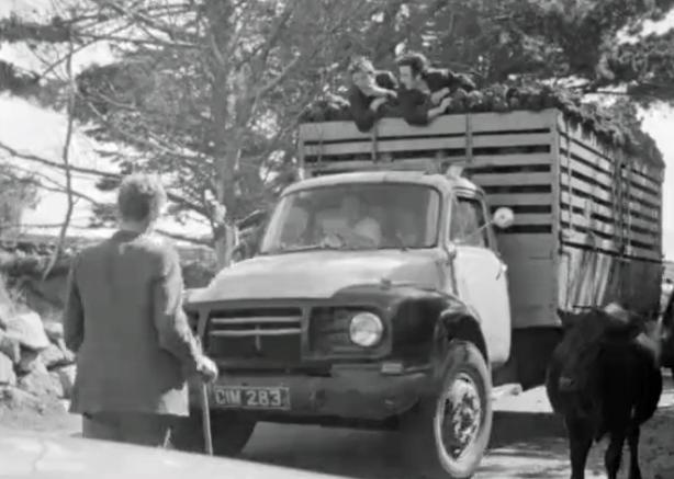 Casla Market Day (1965)