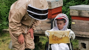 Five-year-old Rian Somers tends to a colony of over 60,000 bees