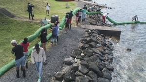 Volunteers carry a handmade oil barrier to block leaked oil from the MV Wakashio in Mauritius