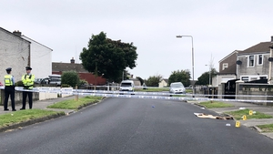 Gardaí are investigating a number of incidents in the Tymon North area (Pics: RollingNews.ie)