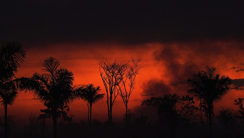 Smoke rises from an illegal fire in Amazon rainforest reserve, north of Sinop in Mato Grosso state