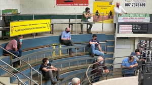 Buyers only will be allowed attend marts and must maintain 2-metre distance in mart rings