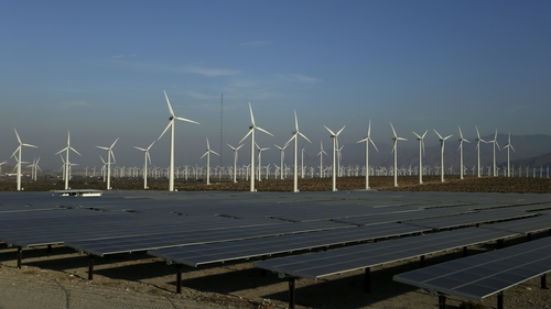 Generation from wind and solar rose by 14% during the first half of 2020 compared with the same period last year