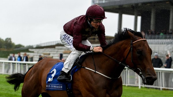 Know It All is back in action at the Curragh