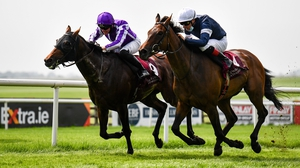 Delphi (far side) denies the late thrust of Master Of Reality in the Leger trial at the Curragh