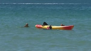 The canoe had drifted from another beach and then capsized in strong tides