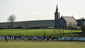 One of the pitches at Louth's centre of excellence in Darver