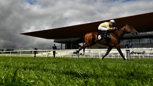 Pretty Gorgeous looks an exciting prospect for the Joseph O'Brien team