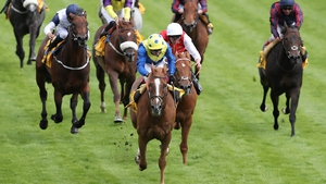 Oisin Murphy leads Dream of Dreams home in the Sprint Cup