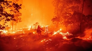 A firefighter tries to dampen flames as they push towards homes during the Creek fire in California