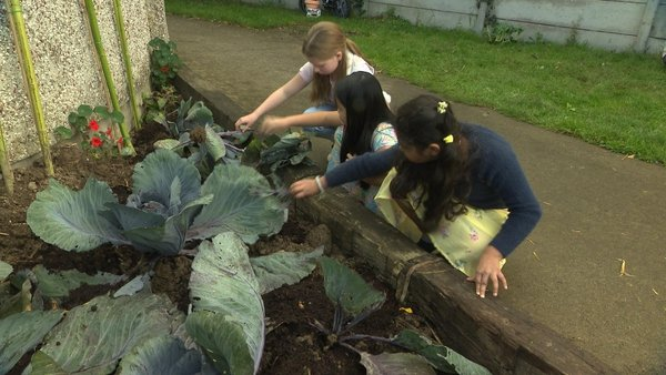 The space allowed the children living there to grow and maintain a vegetable patch