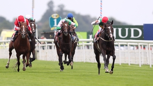 Pyledriver was an impressive winner of the Great Voltigeur on his most recent outing