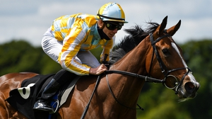 Pretty Gorgeous is a best price of 7-1 for the 1000 Guineas