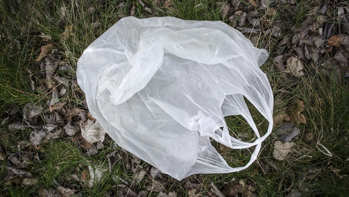 The new fee may be similar to England, where a 10p plastic bag charge takes effect in April 2021
