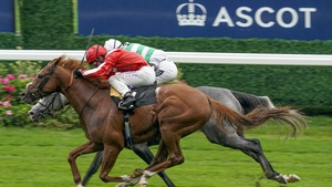 Oisin Murphy on Berkshire Rocco (red) just prevailed at Ascot