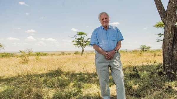 David Attenborough pictured in the Maasai Mara, Kenya