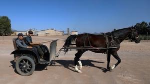 Members of the Mennonite community in Ascension, near El Sabinal in Chihuahua