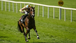 Pretty Gorgeous was declared a non-runner at Longchamp