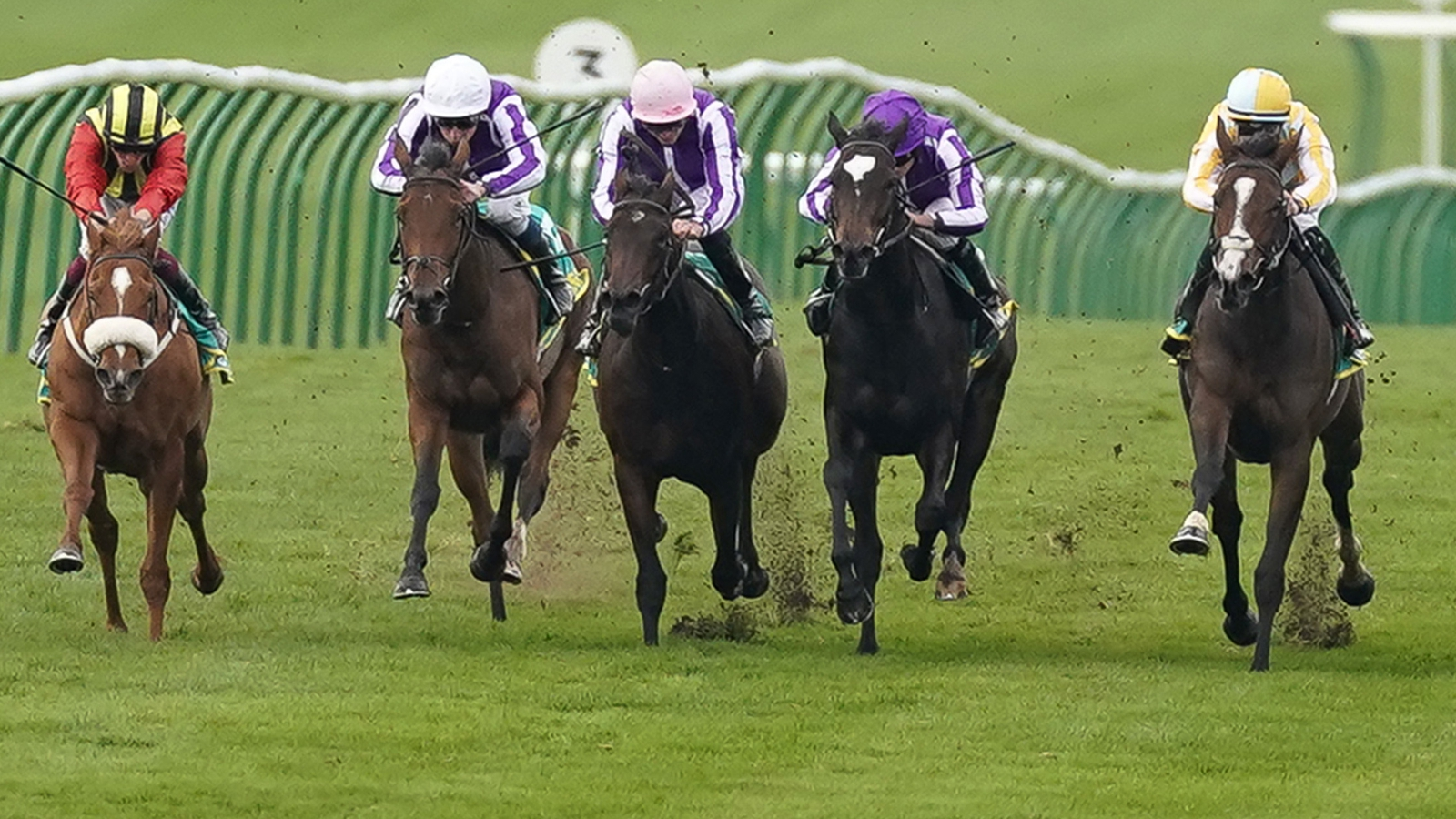 Is there any horse racing in england today
