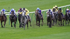 The grey Great White Shark powers away from his rivals at a soggy Newmarket