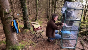 UCD lecturer Colm Fitzgerald is delivering online lectures from a forest in the Wicklow mountains
