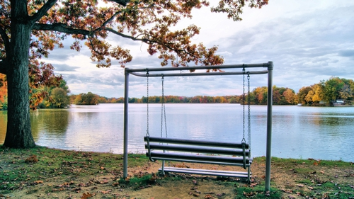 A swing overlooking a lake in the swing state of Ohio