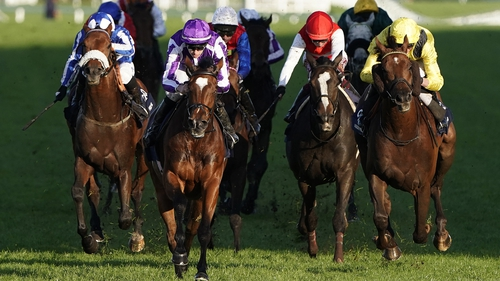 Magical is bidding for a second consecutive win in the Champion Stakes