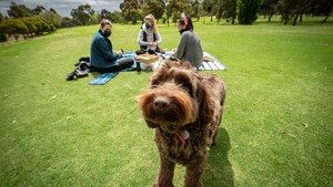 People enjoying a picnic today on the Royal Park Golf Course in Melbourne after golf courses were allowed reopen