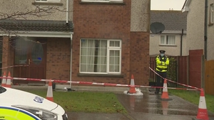 The incident happened at a house in The Fairways estate on the Dublin Road