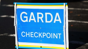 The driver initially stopped for gardaí, but then left the scene, hitting a garda