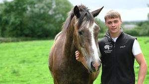 Michael O'Flynn co-founder of HorsePay