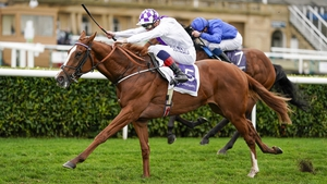 Mac Swiney's juvenile campaign culminated with a victory in the Vertem Futurity Trophy at Doncaster