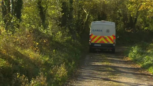 Three dead following shooting incident at Cork farm