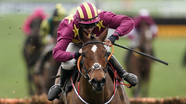 Minella Indo is being lined up as a Gold Cup contender