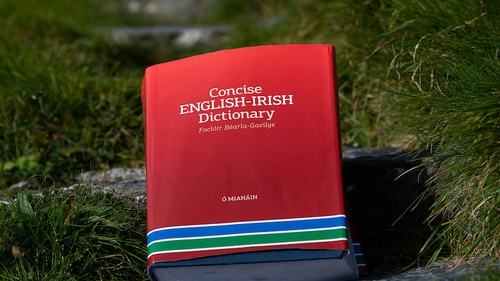 The dictionary contains 1.8 million words in contemporary English and Irish