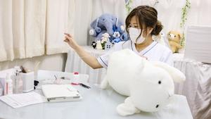 Natsumi Hakozaki working on Yuki-chan the sheep