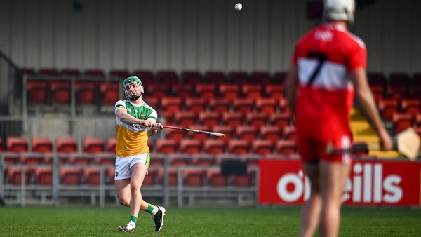 Eoghan Cahill found the net for Offaly