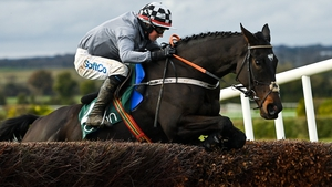 Castlegrace Paddy and Bryan Cooper clear the last at Navan