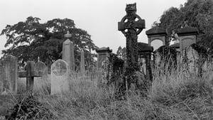 Dé Luain 16 Samhain ag 2.05 pm cuirfear tús le craoladh an leagan raidió d'úrscéal Mháirtín Uí Chadhain, Cré na Cille.