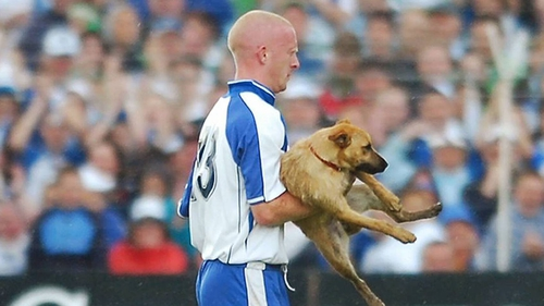 John Mullane escorts a dog from the pitch in the 2007 Munster final